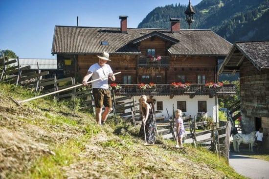 Heu machen am Reitbauernhof, Großarl, Salzburger Land –Urlaub am Bauernhof in Österreich