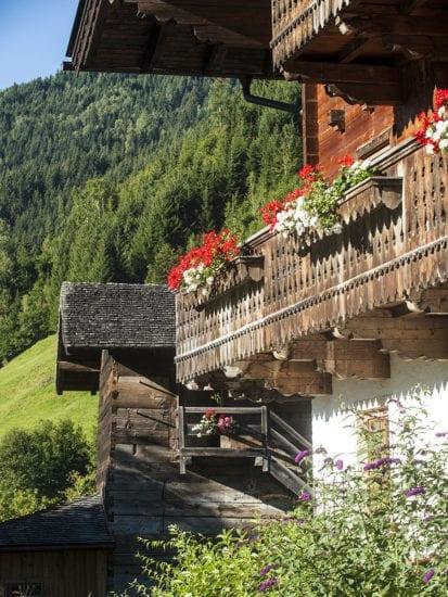 Urlaub am Bauernhof - Reitbauernhof in Großarl