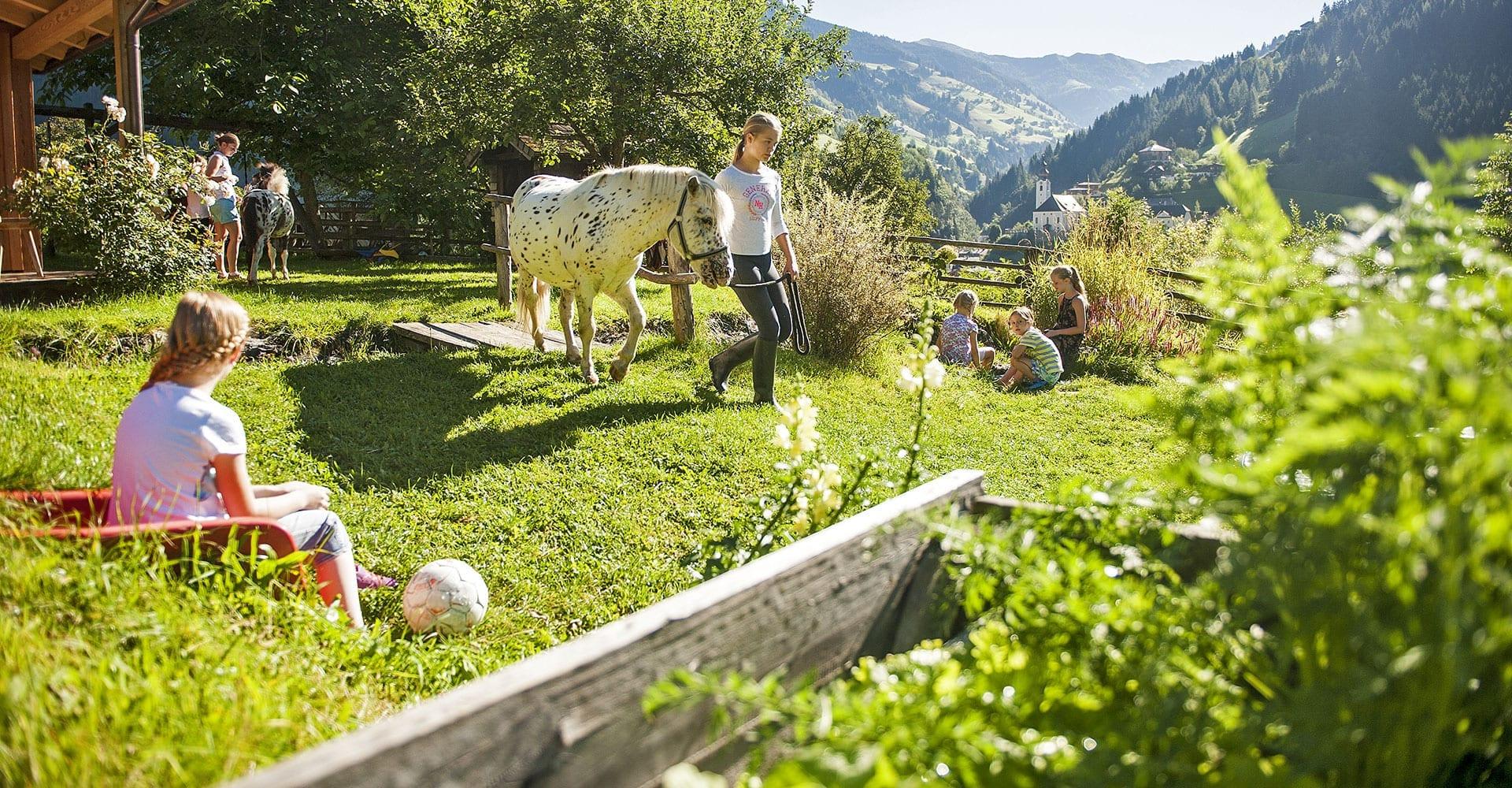 Bauernhof kennenlernen