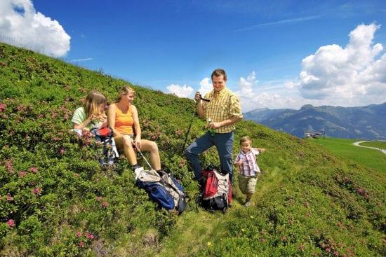 Wanderurlaub & Sommerurlaub in Großarl - Reitbauernhof im Großarltal - Wandern & Bergsteigen