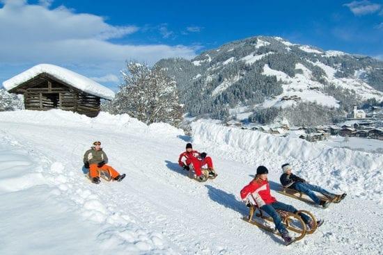 Winter- & Skiurlaub am Erlebnis-Bauernhof Reitbauer in Großarl, Ski amadé