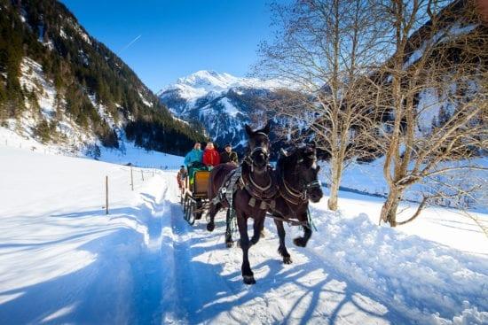 Winterurlaub & Skiurlaub in Großarl - Ski amadé - Reitbauernhof - Pferdeschlittenfahrten